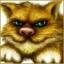 Добрый Котик
