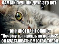post-2892-0-99509300-1394722662_thumb.jpg