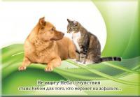 post-4834-0-13519200-1427792947_thumb.jpg