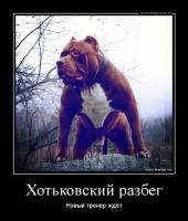 post-440-0-51451800-1436717423_thumb.jpg