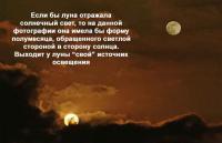 post-71-0-81180200-1469190390_thumb.jpg