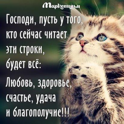 imageFAD1VFBM.jpg