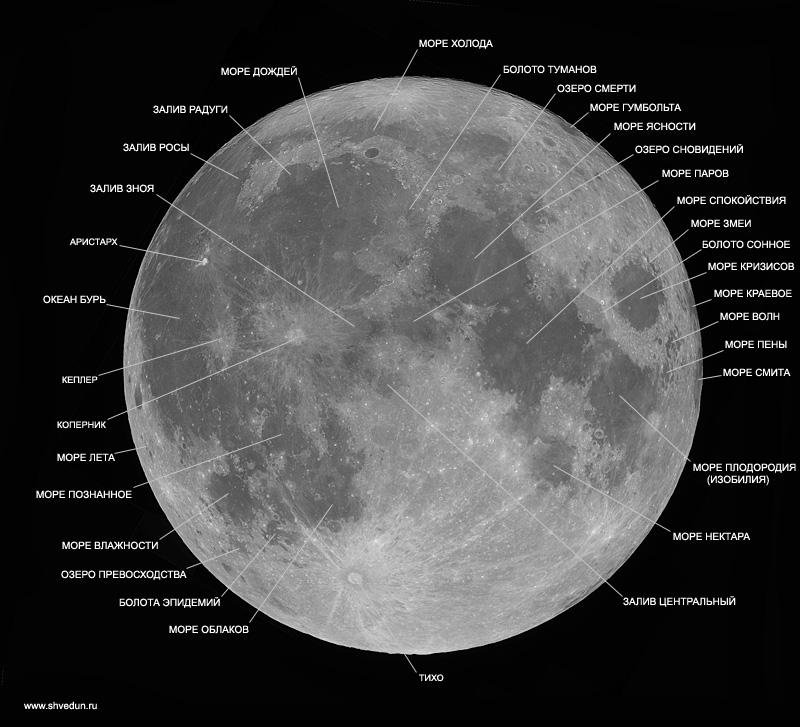 moon-mare-name.jpg