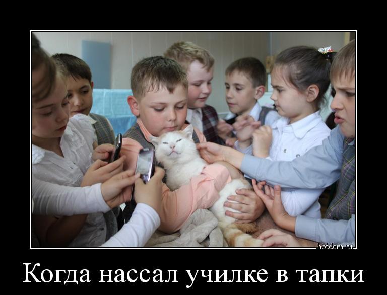 hotdem_ru_574838058491486186583.jpg.195dbacbd17488e23b41396d97347c68.jpg