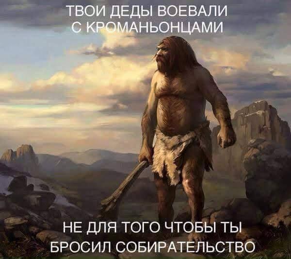 400084300534_437774.jpg
